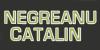 NEGREANU CATALIN - agremente si expertize - evaluarea proprietatii