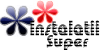 INSTALATII SUPER - instalatii termice - montaj centrale termice - montaj panouri solare - radiatoare