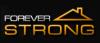 Forever Strong- Constructii civile Termoizolatii exterioare  Alpinism utilitar  Amenajari interioare