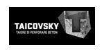 TAICOVSKY - Carotări diamantate - Tăiere și carotare beton
