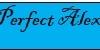 PERFECT ALEX- hidroizolații, construcții civile și montaj articole sanitare