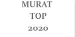 MURAT TOP 2020 - Confecții metalice, balustrade, hale metalice, porți, garduri