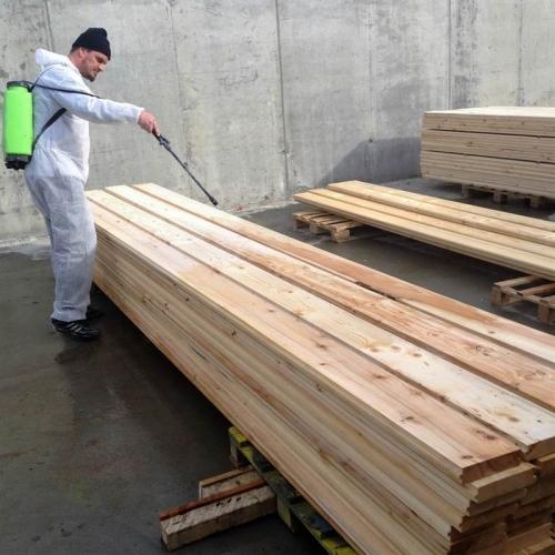 Tratare cu Bios Wood 224