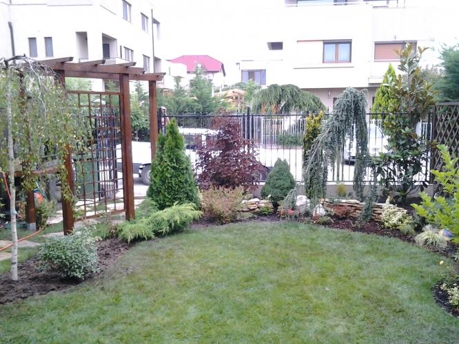Rasaduri si puieti Garden Beauty